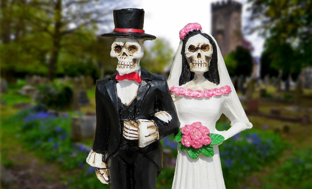 Halloween Costumes for Couples Skeletons